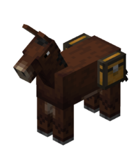 Chested Mule.png