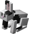 Black & White Rabbit.png