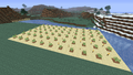 Birch Farming.png