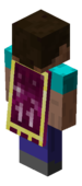 New Years 2011 Cape.png