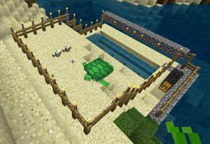 Tutorials Turtle Farming Official Minecraft Wiki