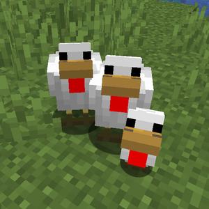 Chicken – Official Minecraft Wiki