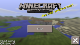 Pocket Edition 0.9.5.png