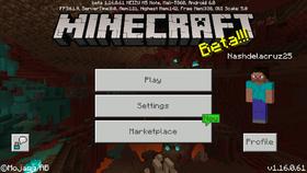Bedrock Edition 1.16.0.61.png
