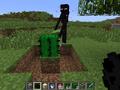 Grass cactus.png