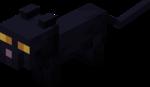 Baby Black Cat.png