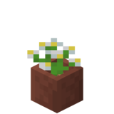 Potted Azure Bluet JE2 BE2.png