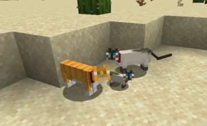Cat – Official Minecraft Wiki