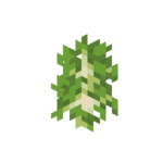 Birch Sapling JE2 BE2.png