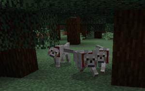 Wolf – Official Minecraft Wiki