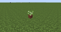 Potted Birch Sapling JE0.png