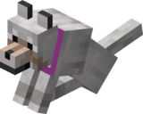 Sitting Tamed Wolf with Magenta Collar.png