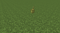 Cocoa Age 0 (S) 14w10a.png