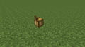 Cocoa Age 1 (N) 14w10a.png