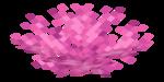 Brain Coral Fan.png