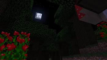 ForestNighttime.png