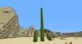 19blocktallcactus1.png