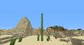 19blocktallcactus.png