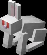 Albino Rabbit.png