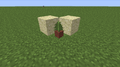 Potted Fern JE0.png