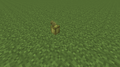 Cocoa Age 0 (N) 14w10a.png