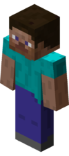 "The default player skin, ""Steve"", as it appears in-game."