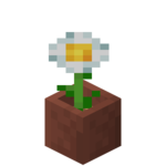 Potted Oxeye Daisy JE2 BE2.png