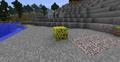 Beta sponge.png