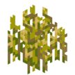 Wheat Age 6 JE4 BE2.png