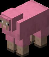 Pink Sheep BE5.png