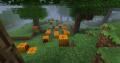 19 Pumpkins.png