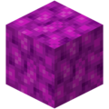 Bubble Coral Block.png