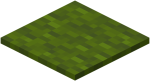 Green Carpet.png