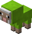 Baby Lime Sheep Revision 1.png