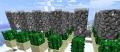 Cactusfarm3.jpg