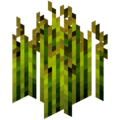 Wheat Crops.png