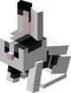 Black & White Baby Rabbit.png