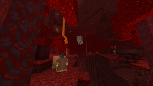 The Nether.png