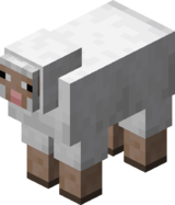 White Sheep.png