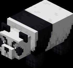 Aggressive Panda.png