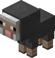 Baby Gray Sheep Revision 1.png