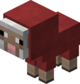 Baby Red Sheep Revision 1.png