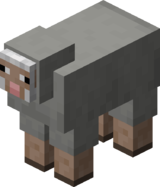 Light Gray Sheep.png