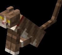 マイクラ 猫 種類