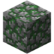 Mossy Cobblestone.png