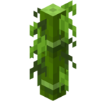 Small Leaves Old Bamboo.png