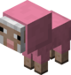 Baby Pink Sheep.png