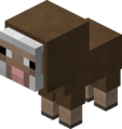 Baby Brown Sheep Revision 1.png