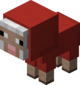 Baby Red Sheep.png