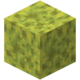 Wet Sponge Texture Update.png